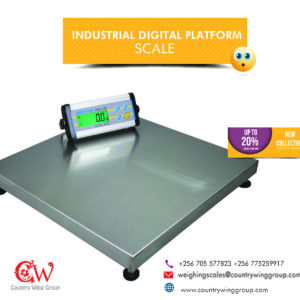 What is the cost of Platform scales with stainless steel plate in Kampala Uganda