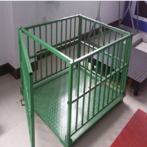 Livestock scales with two aluminum castors for input and output door in Gulu
