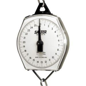 Salter Hanging Weighing Scales 100kg & 200kg