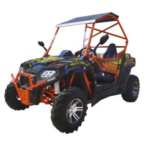 YOUTH DUNE BUGGY 200 CC
