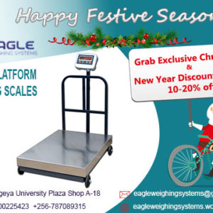 platform weighing scales supplier in Entebbe