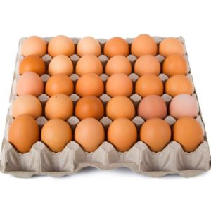 HEALTHY EGGS FROM HEALTHY CHICKEN ;