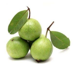 Adozen of African Guava, Psidium guajava