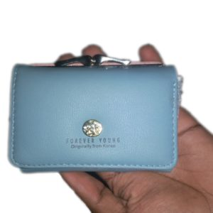 Forever Young Money Purse For Ladies Light Blue